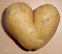 botany of desire potato