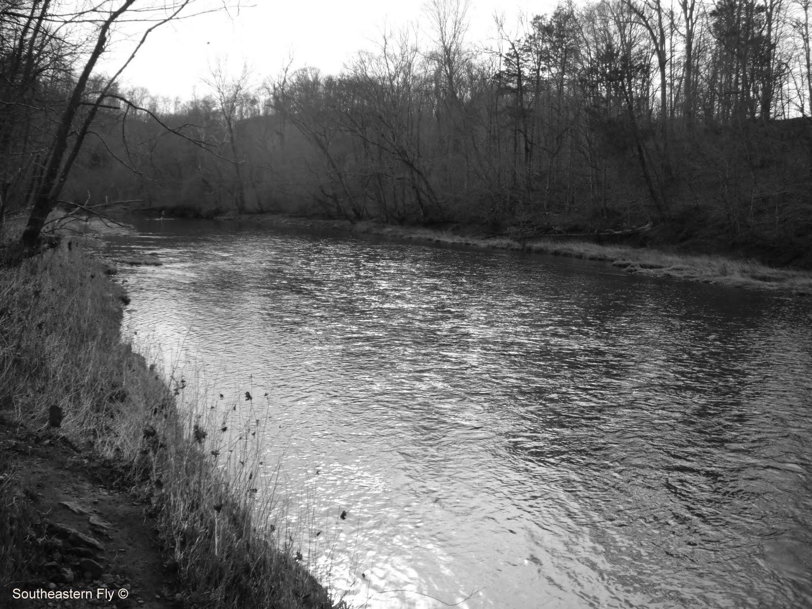Southeastern fly an elk river fishing report for Elk river fishing