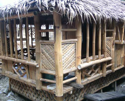 bahay kubo in cebu for sale