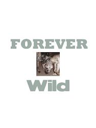"""""""Forever Wild"""""""