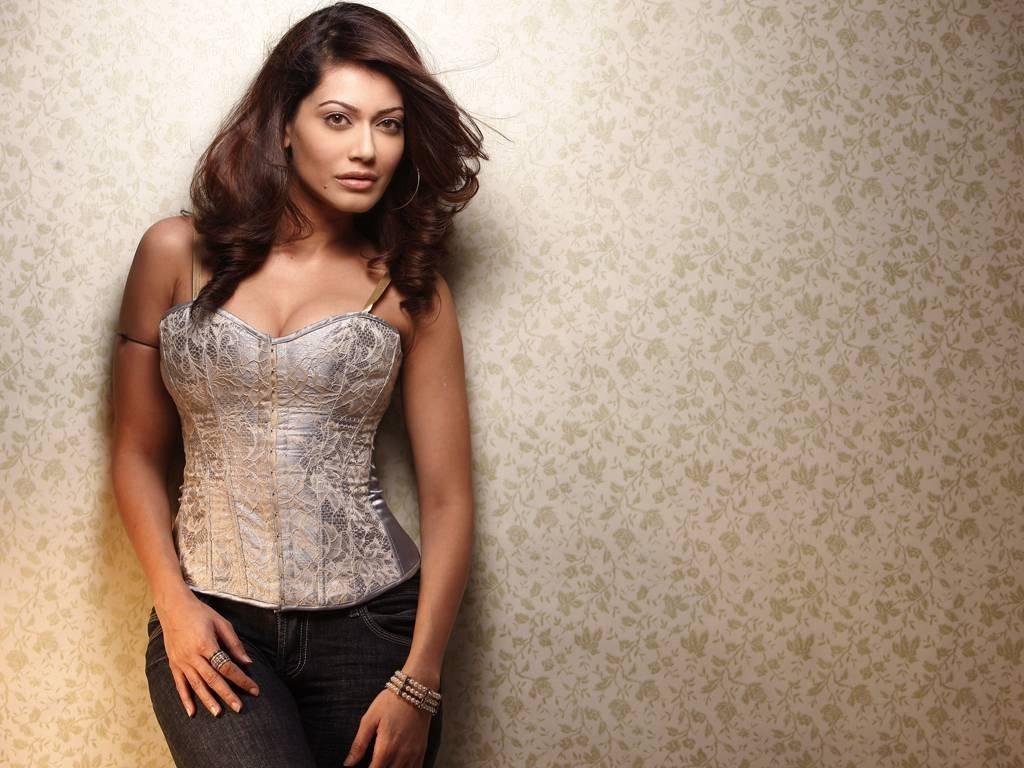 Bollywood actress payal rohtagi hot bikini photo