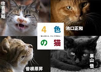 共著「4色の猫」写真集