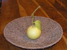 Fruit from the Garden - Binyamina