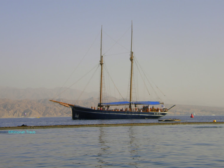Off the Shores of the Red Sea