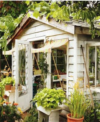 urban+grace+shed.jpg