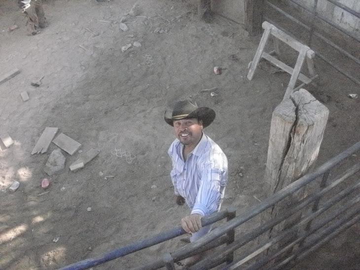 ruti burciaga (la polvadera) cuidando el corral .