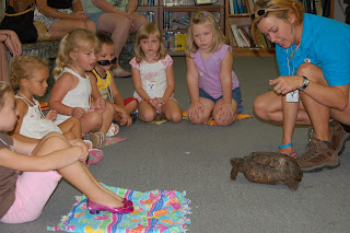 Group of Children looking at Box Turtle