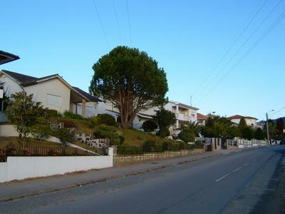 Disseram-me serem casas, na maioria, de médicos do Porto