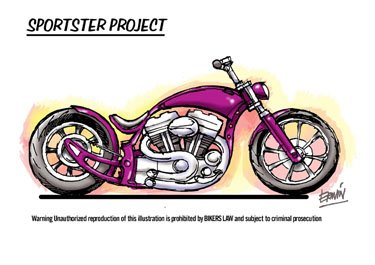 Custom bike concept