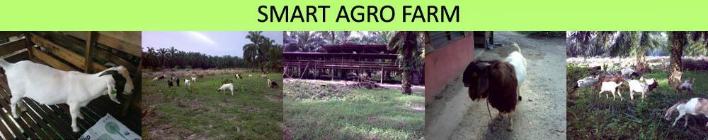 Smart Agro Farm