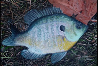 Dad and Daughter Activities: Bluegill