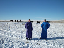 Check out our Snuggie blog