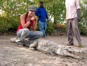 Crocodile sacré de Sabou
