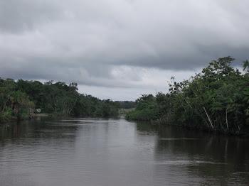 Rio Vila Nova