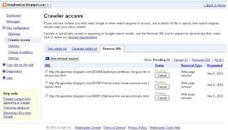 webmaster_tools4