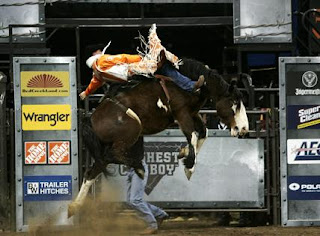 One of the WTR cowboys on the dirt at a World's Toughest Rodeo Show
