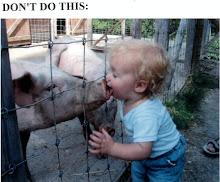Swine Flu Alert!