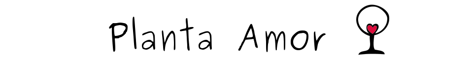 PLANTA AMOR
