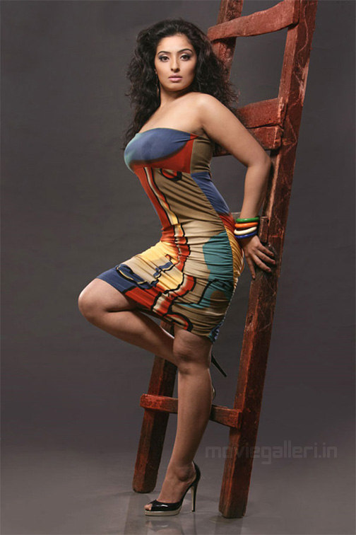 tamil actress mumtaj hot photos mumtaz hot photo shoot stills tamil