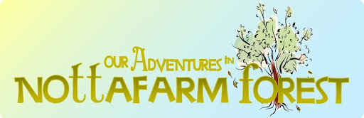 Our Adventures in noTTafarm Forest