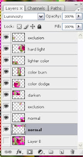 final layer palette