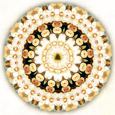 bursting with love mandala