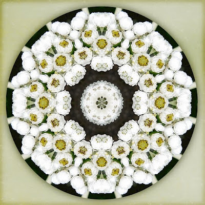 Everlasting Mandala