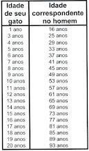 Quer saber a idade do seu gato? veja a tabela abaixo: