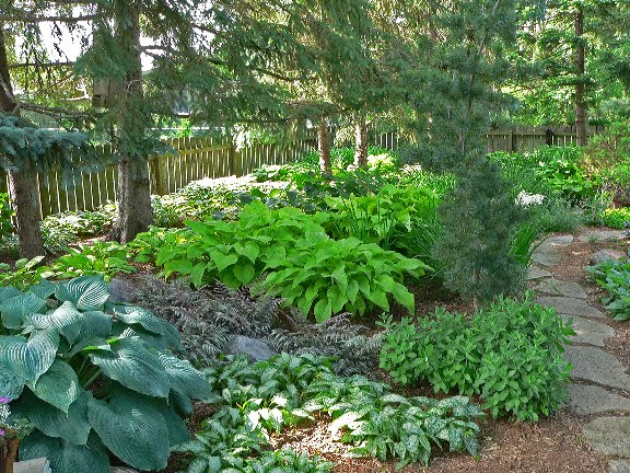 Shade Garden Ideas Hostas Photograph | Gardens: This Back Ya