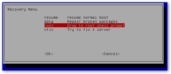 Pilih Drop to root shell prompt