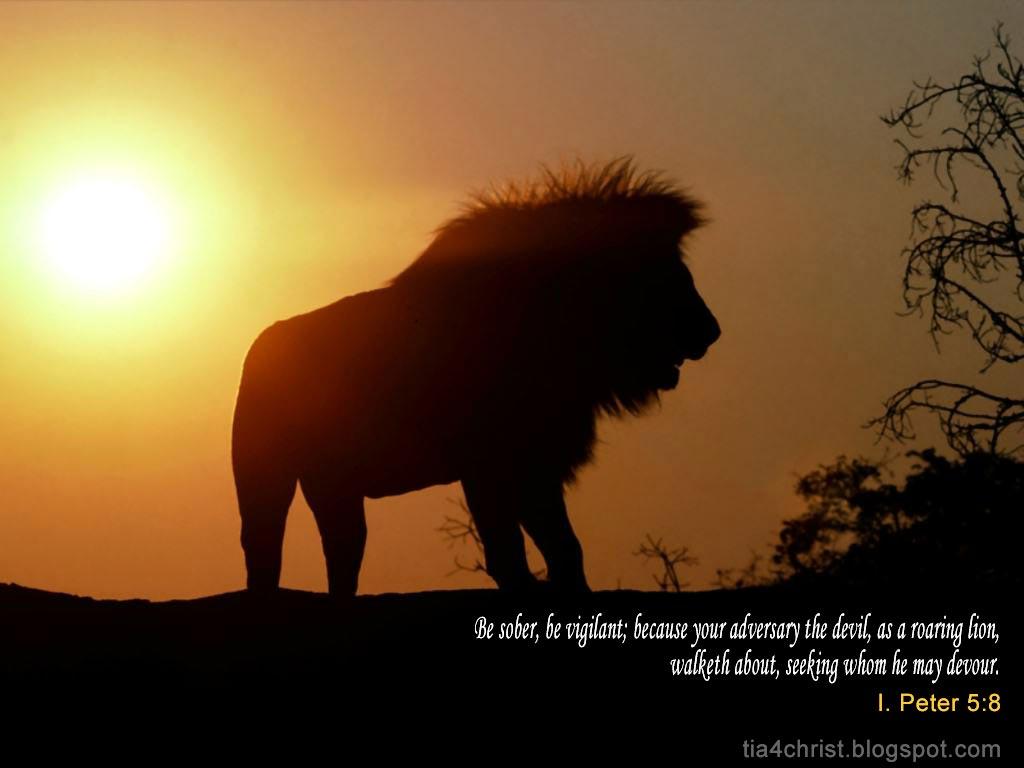 http://1.bp.blogspot.com/_enRW2gU1hjg/TI0Nb2wWHjI/AAAAAAAABPs/UZTWBNUUCeI/s1600/lion-at-dusk.jpg