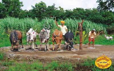 SIDDHAGIRI MUSEUM, Art, Sculptures, shri Kshetra Siddhagiri Math, Kaneri, Tal, Karveer, Kolhapur