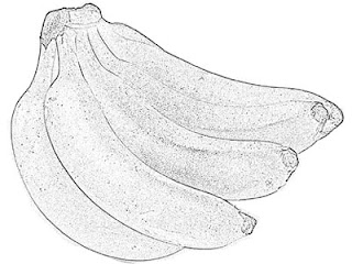 Bananas Sketch