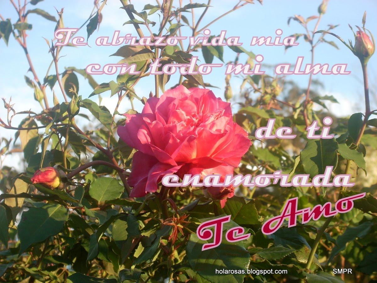 Imagenes de Amor bonitas con frases para compartir