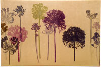 amanda ross, botanical print