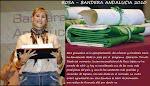 ROSA, BANDERA DE ANDALUCIA 2010
