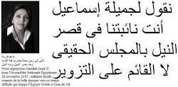 جميلة إسماعيل نائبتنا فى قصر النيل بالمجلس الحقيقى لا القائم على التزوير