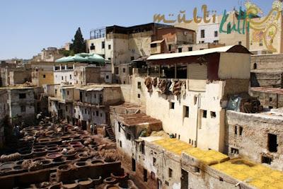 farbiarnie w Fez