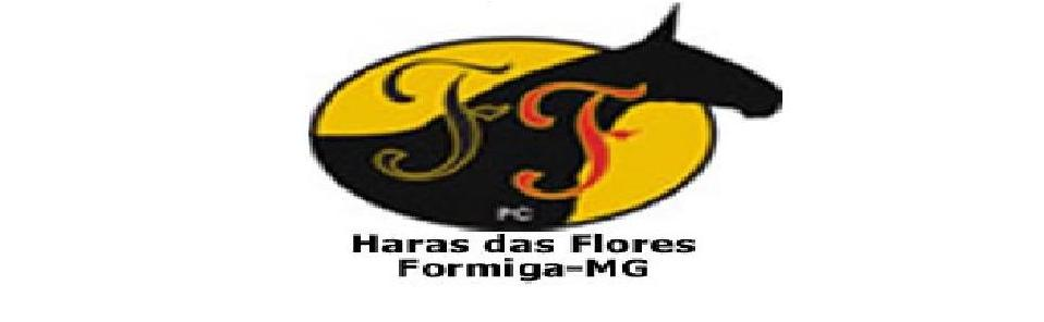 Haras das Flores