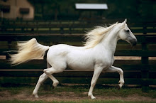 Running Horse