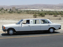 Mini Mercedes Limo
