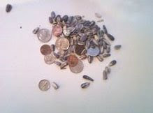 Coins and Seeds