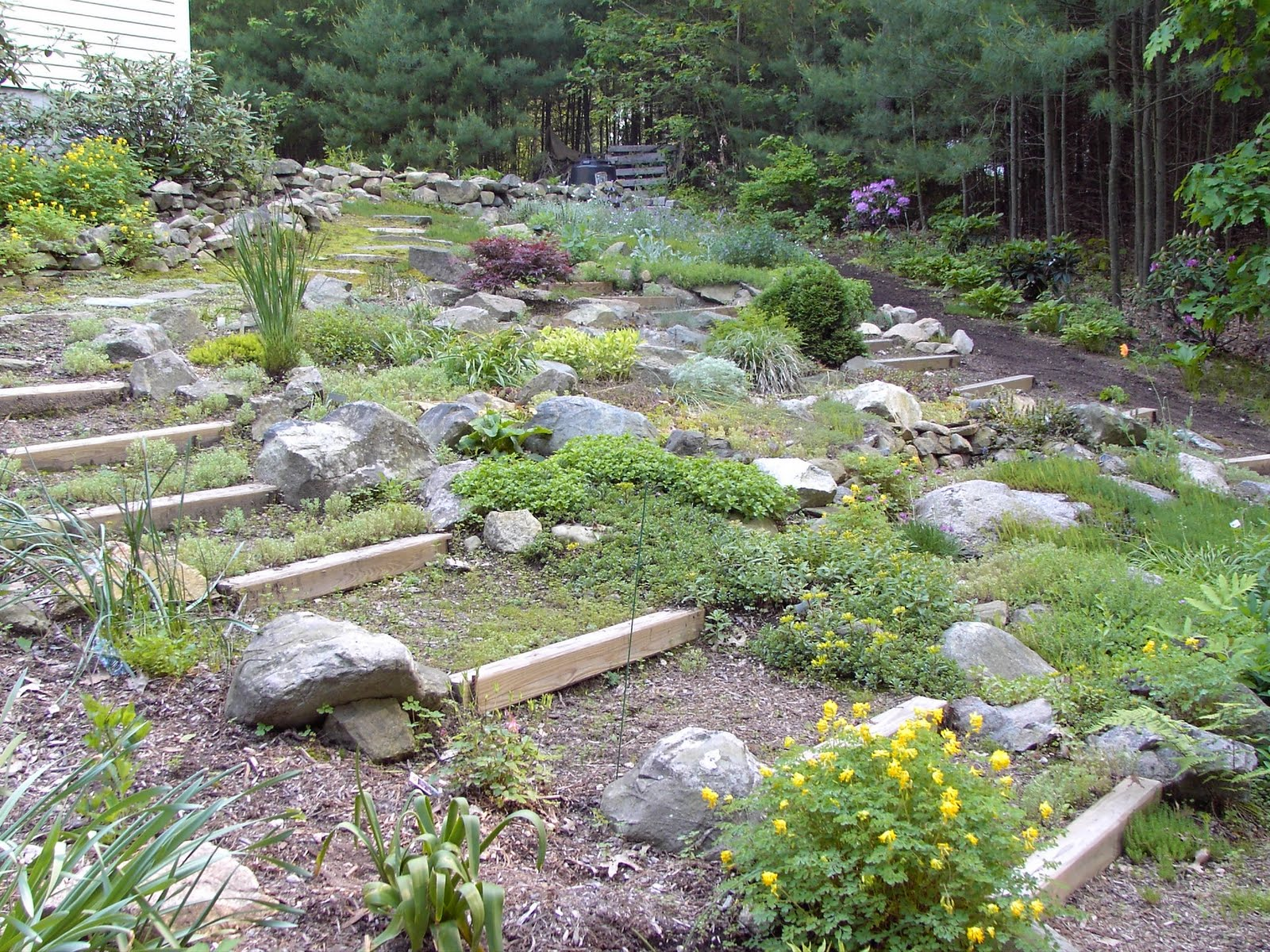 awesome 19 images rock garden plans home plans