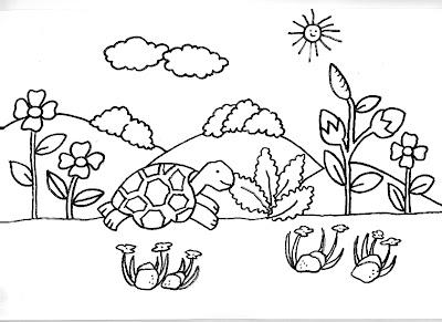 Dibujos gratis para imprimir y colorear de tortugas for Jardin dibujo