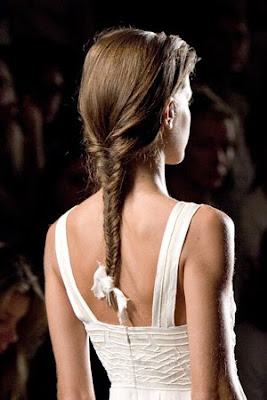 Long Braid Hairstyle Picture