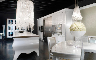 Luxury Black and White Kitchen Interior Design