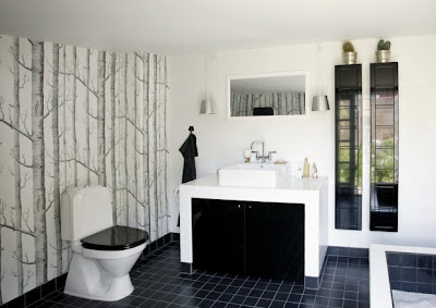 Cool Black And White Bathroom Design
