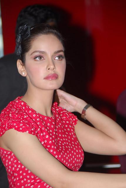 Bollywood and south Indian masala actress Shazahn Padamsee