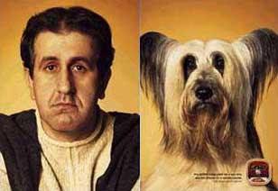 Un perdedor y su perro