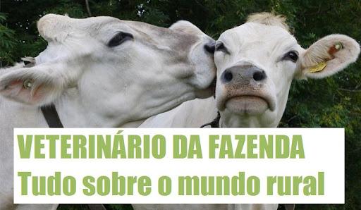 VETERINÁRIO DA FAZENDA